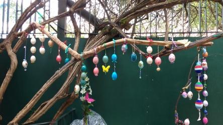 Painel feito com móbiles de ovos pintados por alunos na Escola Waldorf Alecrim Dourado